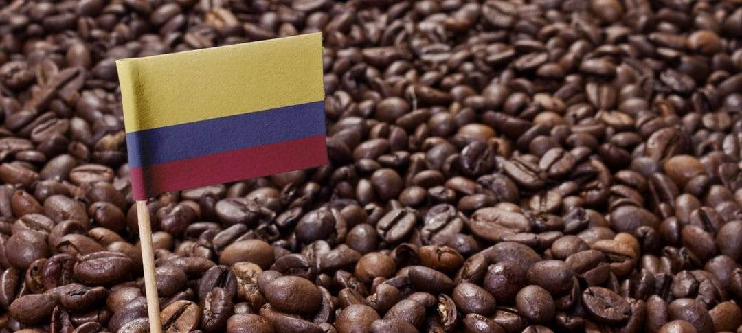 قهوه عربیکا در کلمبیا