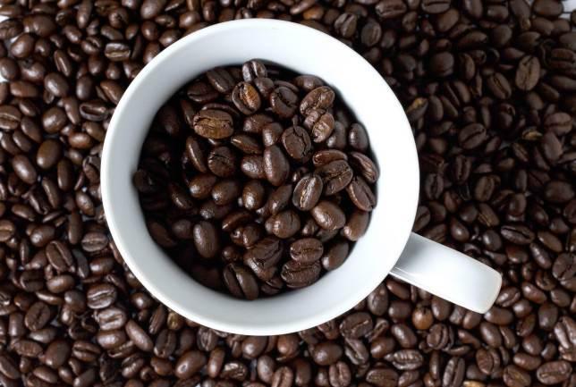 جایگاه قهوه عربیکا اوگاندا