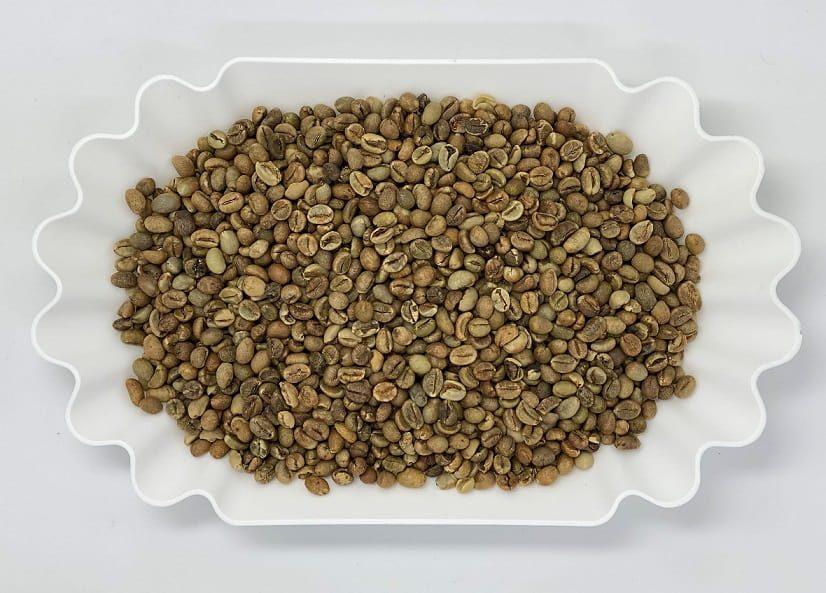 قهوه سبز روبوستا اوگاندا
