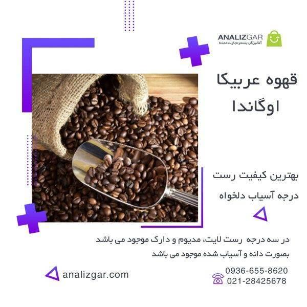 خرید قهوه عربیکا اوگاندا