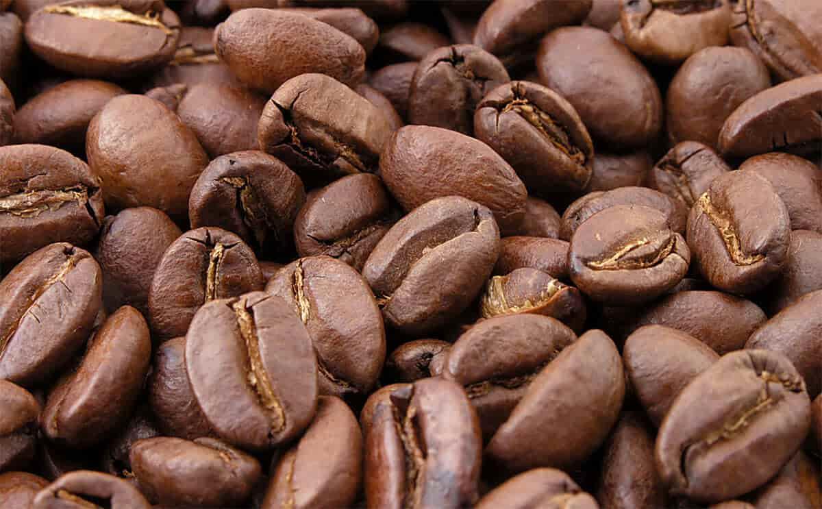 دانه قهوه روبوستا برزیل