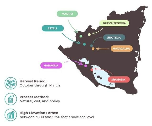 مناطق پرورش قهوه عربیکا نیکاراگوئه