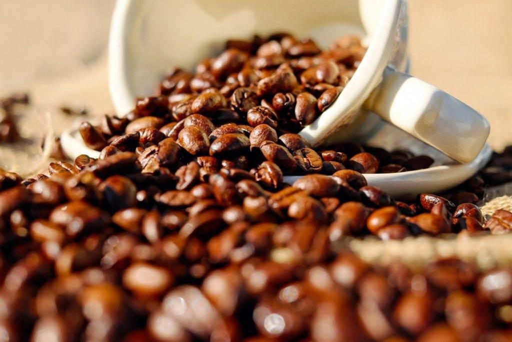 قهوه عربیکا ولکان سان مارکوس گواتمالا