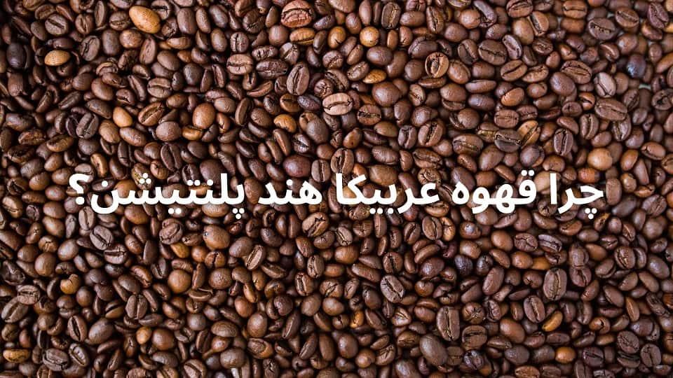قهوه عربیکا هند
