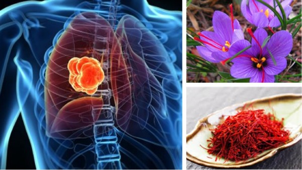 خاصیت ضد سرطان زعفران